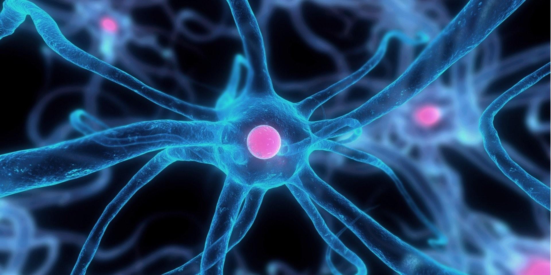 Pensum Regenerative Medicine - Banner 2